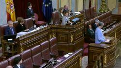 Un diputado de Bildu genera aplausos y malestar por su nueva broma al ver a Suárez Illana dándole la