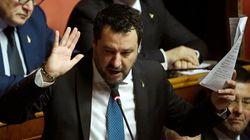 Salvini, patria e