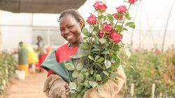 アフリカの美しいバラを日本へ。仕事に情熱を傾けた日々を経て迎えた母としてのステージ