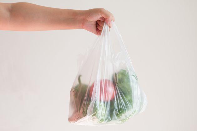 Il sacchetto di plastica e