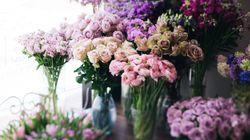 Μάθετε τι συμβολίζει ένα λουλούδι πριν το