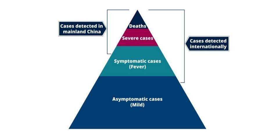¿Cuáles son los casos de coronavirus detectados? En la pirámide, de arriba abajo:...