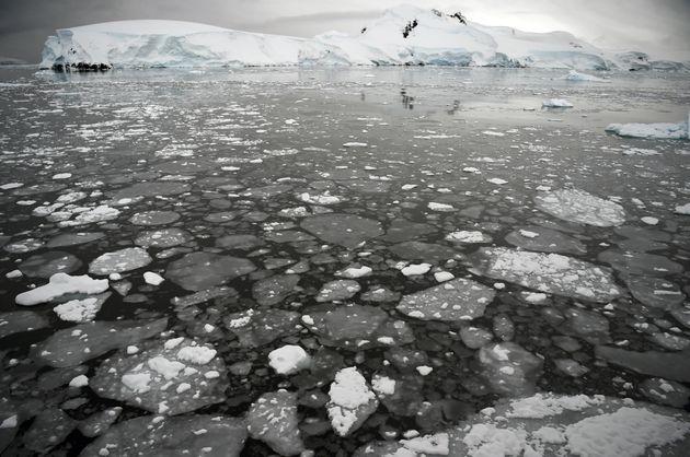La fonte des glaces s'accélère en Antarctique, où les glaciers sont surveillés de près alors que les...