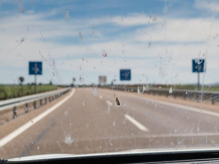 Splattering of dead insects on a car windscreen, windshield whilst driving along a road with signs and road  white markings.