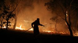 All NSW Bushfires Contained For First Time In Nearly Six