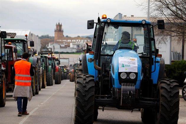 Tractorada convocada por las organizaciones agrarias Asaja, COAG y UPA en la localidad cordobesa de