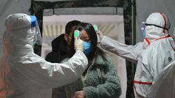Coronavirus: Health Authorities Search For 'Patient Zero' Who Spread Virus