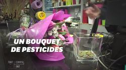 Pour la Saint-Valentin, voici ce qu'il y a dans les bouquets de