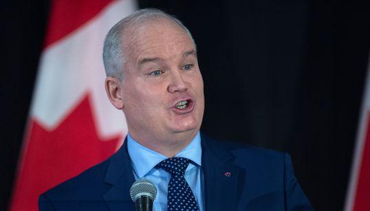 Tory Leadership Hopeful Pledges To Privatize CBC News' English