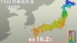 東京、65年ぶり4日連続で15℃超え 週明けに春一番の可能性も