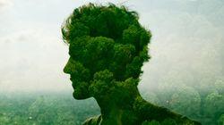 La sfida ambientalista dei
