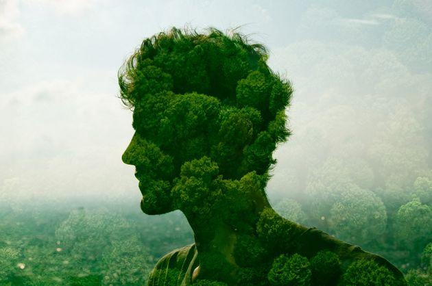 La sfida ambientalista dei conservatori