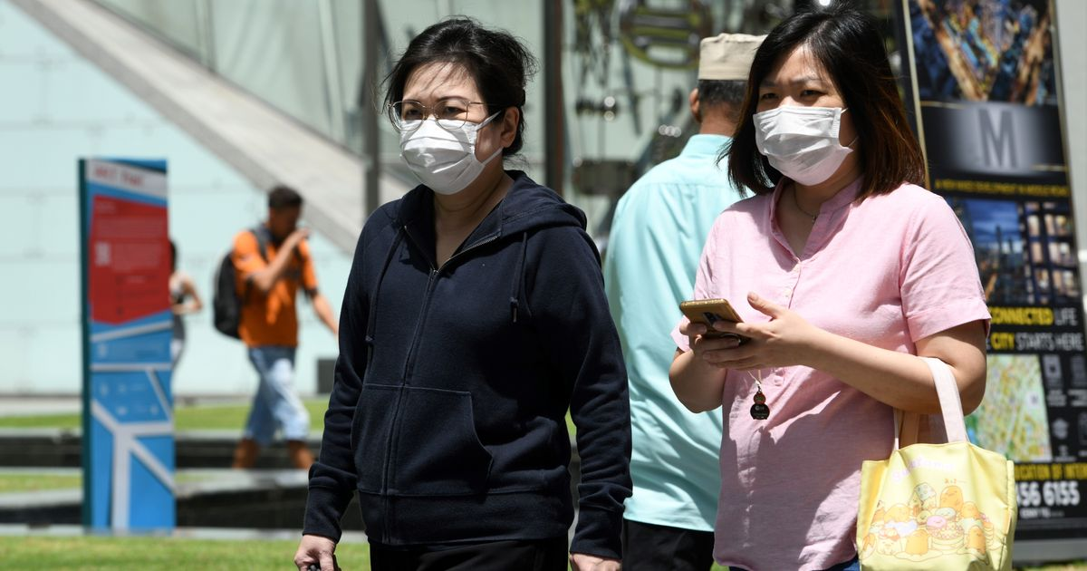 Why Singapore's Method To Combat Coronavirus Can't Be Used By Other Countries