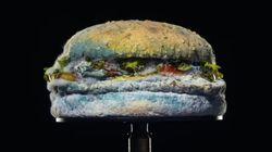 Burger King ci fa vedere come ammuffiscono i suoi panini (ma è un punto a loro favore)
