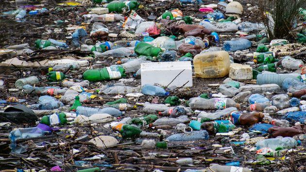 Face à l'urgence écologique actuelle, un millier de scientifiques appellent les citoyens...