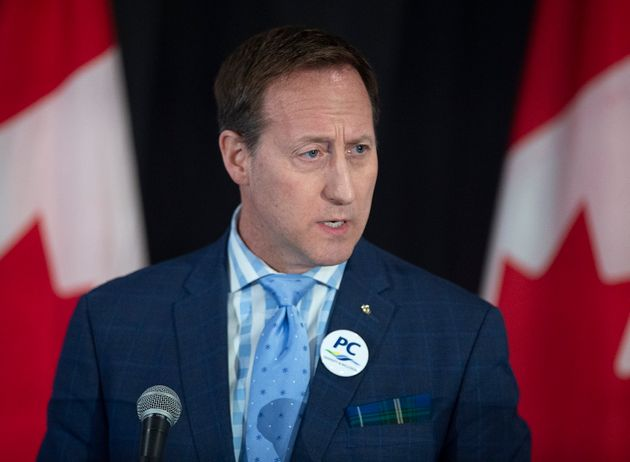 Peter MacKay addresses the crowd at a federal Conservative leadership forum during the annual general...