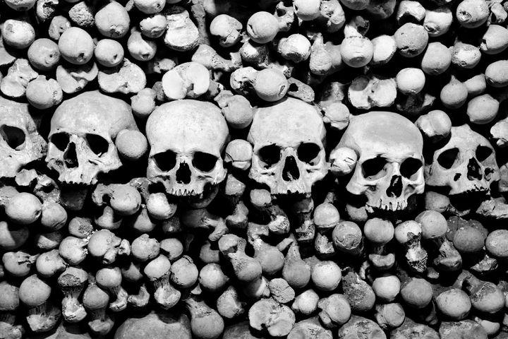 skulls and bones. black and...