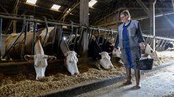 Pourquoi les agriculteurs se désengagent-ils de la vie