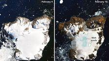 Die NASA Zeigt Erschreckende Bilder Von der Antarktis-die 'Heißesten Tagen Auf Rekord'