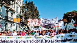 El campo se moviliza en Jaén y Ciudad Real contra los bajos precios en origen de sus