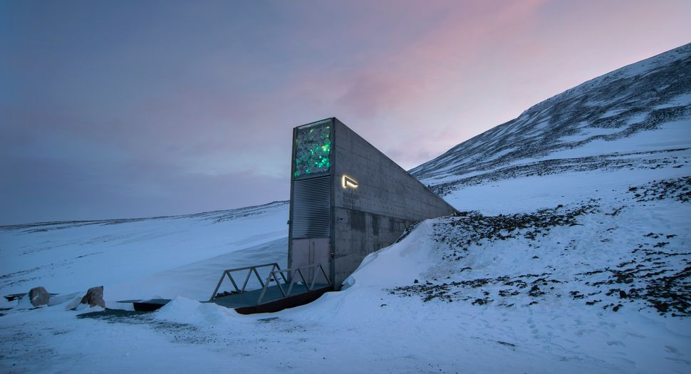 The Svalbard Global Seed Vault is the centralized backup system for seed banks around the world. Its goal is to preserve