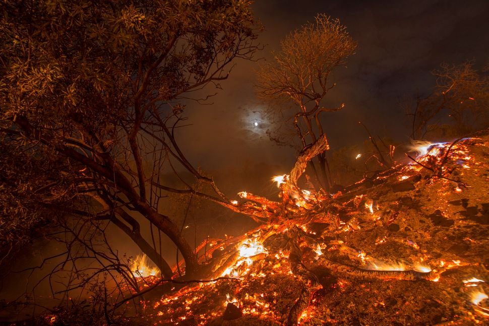 Flames spread on a moonlit night at the La Tuna Fire on Sept. 2, 2017 near Burbank, California.