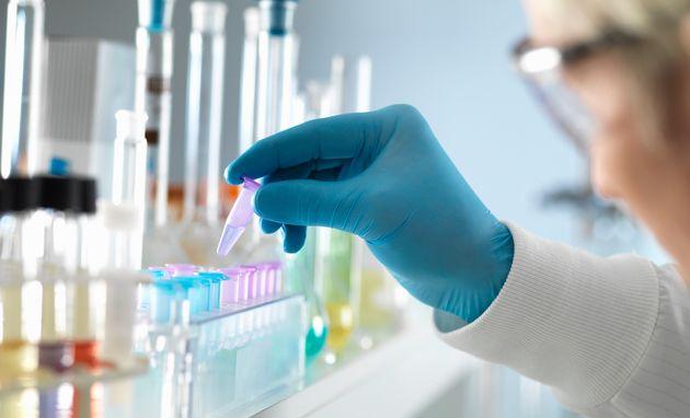 Des tests ADN doivent permettre d'élucider les circonstances de la mort d'Elisa Pilarski, tuée...