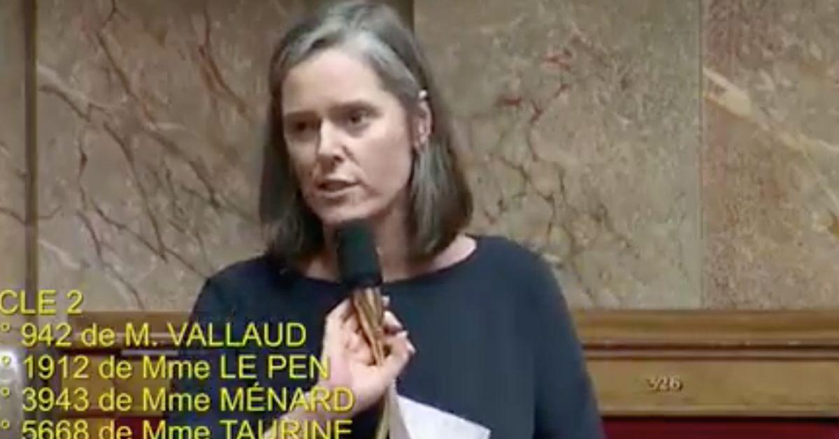 Le gros lapsus de cette députée LREM sur la réforme des retraites régale l'opposition