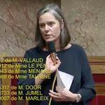 Le gros lapsus de cette députée LREM sur la réforme des retraites régale