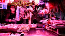 중국 정부가 야생동물 섭취와 판매를 전면