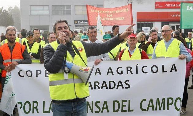 Agricultores de las principales organizaciones agrarias se movilizan en la localidad sevillana de