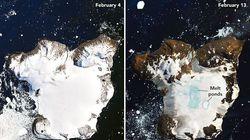 Cette île de l'Antarctique a perdu 20% de sa couverture neigeuse en 10