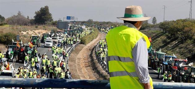 Tractorada de agricultores y ganaderos cortan carretera A-4 a la altura de la localidad sevillana de