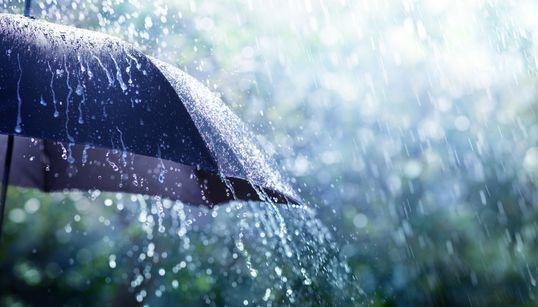 Un printemps doux et pluvieux qui pourrait être propice aux