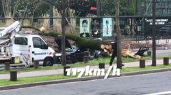 Des vents violents provoquent la mort d'un automobiliste à