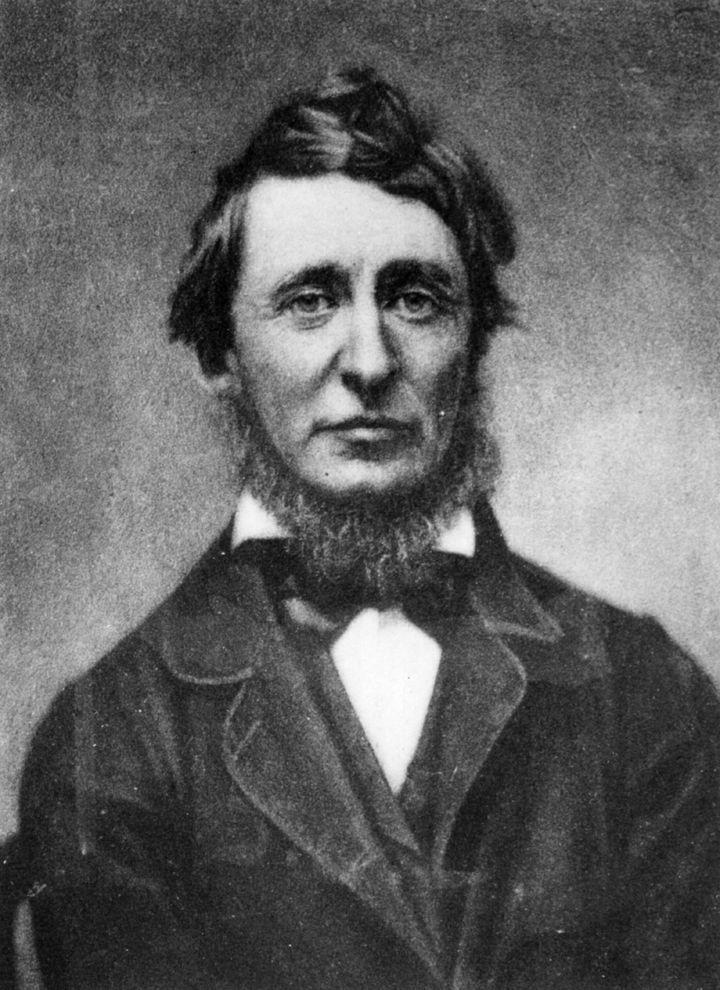 Retrato de Henry David Thoreau.