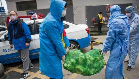 新型コロナ、中国政府が「サンプル破棄しろ」と情報の封じ込めを指示か。中国メディア報道