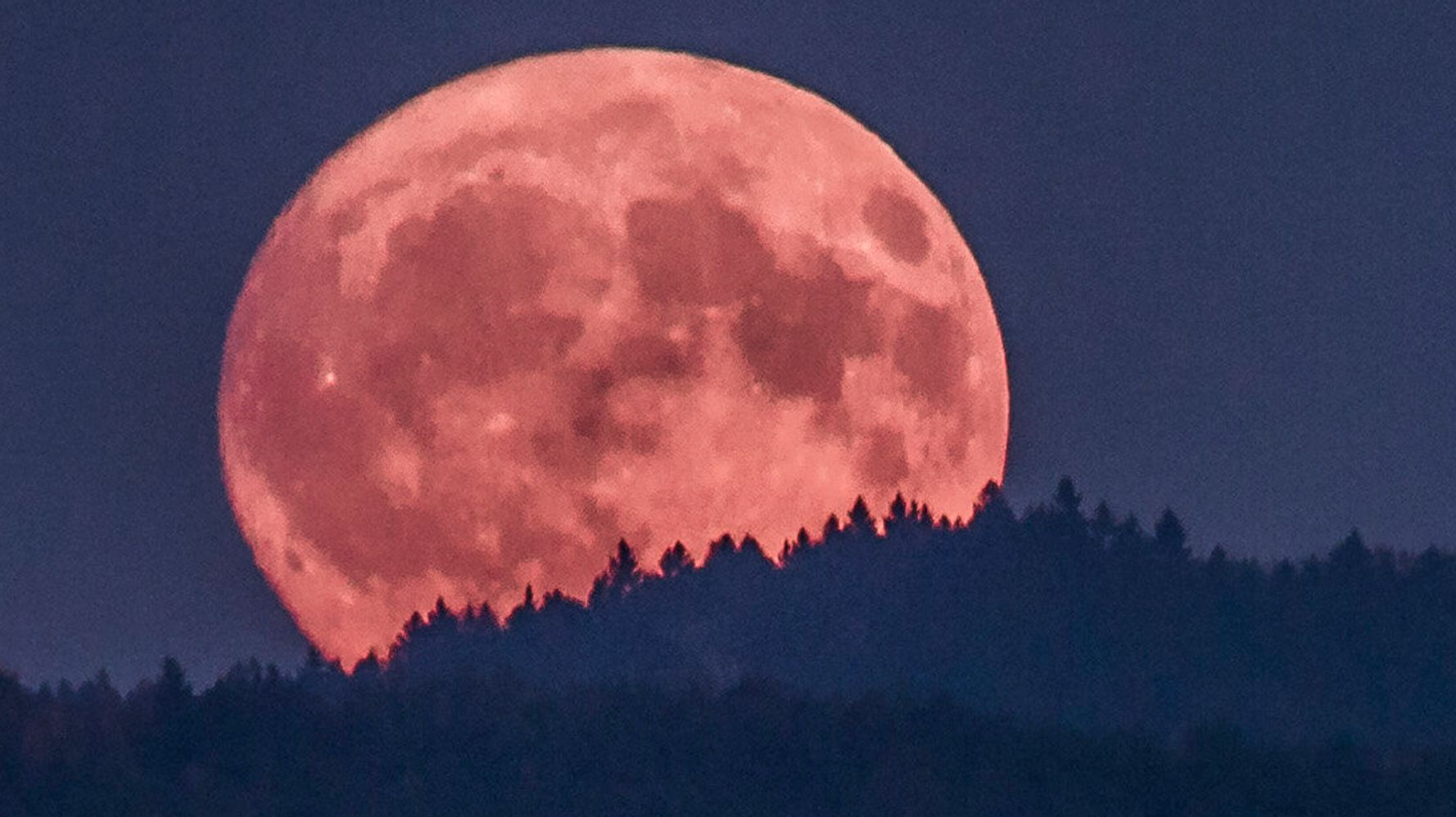Earth Just Captured A Spiffy New Moon, But Don't Get Too Attached To It - The Union Journal