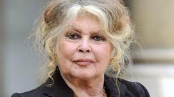 À contre-courant, Brigitte Bardot soutient Roman