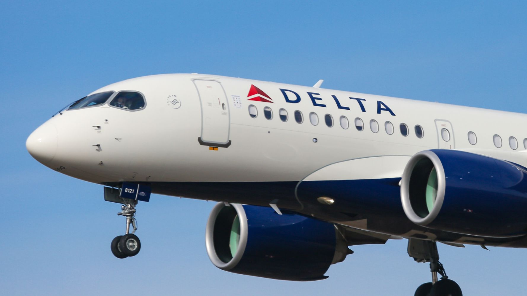 Dog Pronounced Dead After Delta Flight From Ohio To Los Angeles