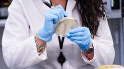 Le premier cas du nouveau coronavirus est confirmé au