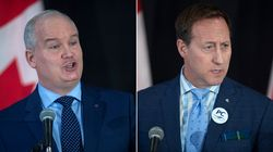 Peter MacKay, Erin O'Toole Both Want To Force Early