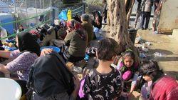La policía griega vuelve a cargar en la frontera terrestre contra