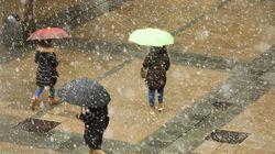 Tiempo: la nieve y el viento vuelven a dejar su sitio a la
