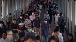Il coronavirus rende ancora più urgente una nuova alleanza tra foreste e