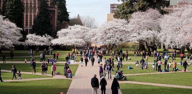 Spring on the University of Washington campus on March 20, 2018, in