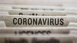 Il coronavirus e l'ecologia delle