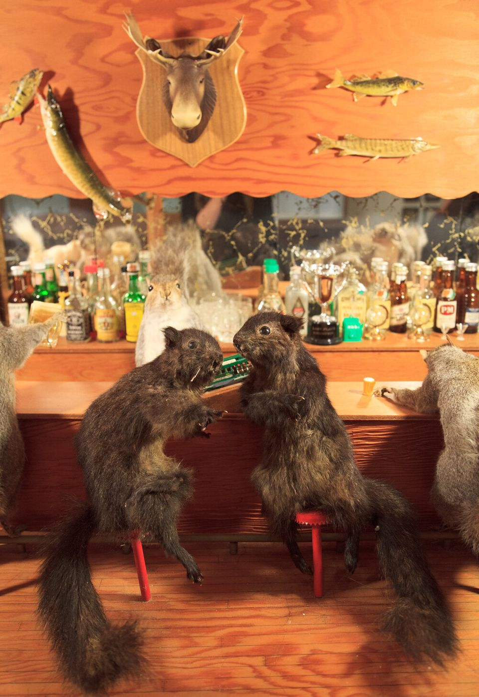 20th century anthropomorphic taxidermy tableau. Once displayed at Cress Funeral Home in Madison, Wisconsin. From the collecti