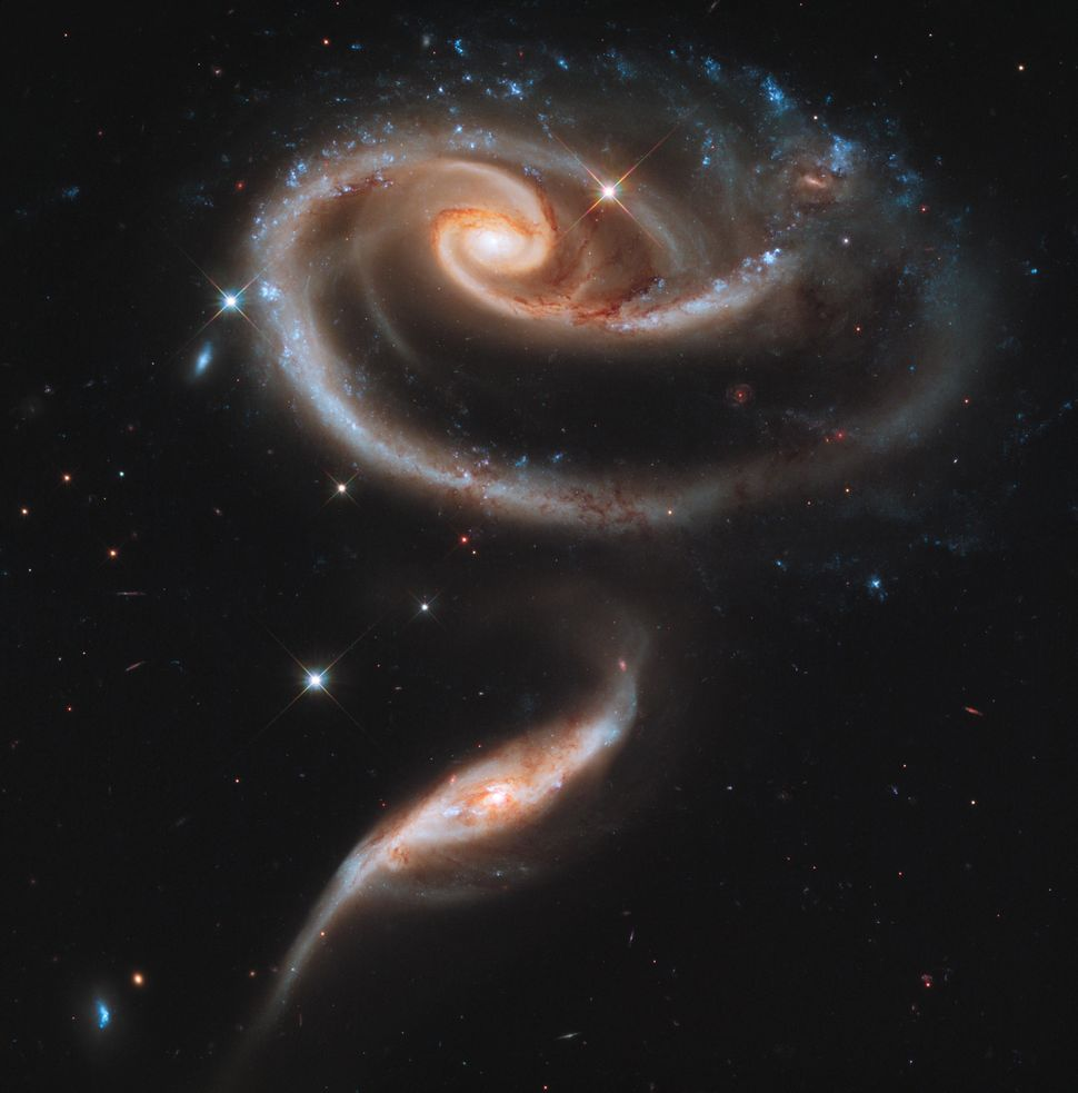 2011: Interacting Galaxies Arp 273  Credit: NASA, ESA, and the Hubble Heritage Team (STScI/AURA) <br> <br> (Read about the im