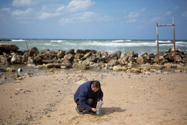 Dror Planer of the Israel Antiquities Authority collecting the gold coins.